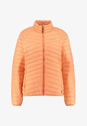 COLLINGWOOD - Winter jacket - rose