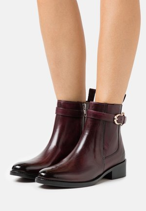 ELAINE  - Classic ankle boots - mulberry/burgundy/tan