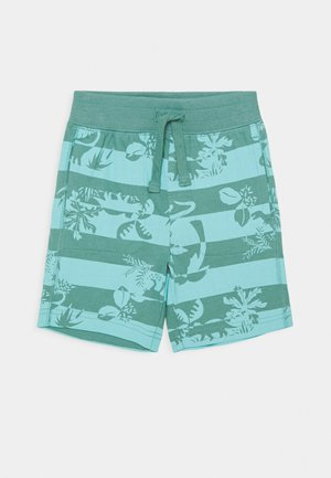 TODDLER BOY - Shorts - green