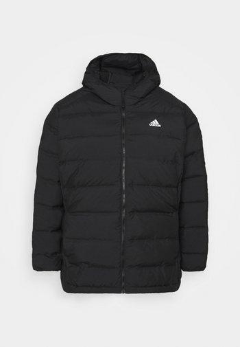 HELIONIC HOODED DOWN - Gewatteerde jas - black