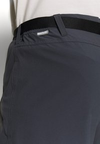 Regatta - XERT - Outdoor trousers - seal grey - 4