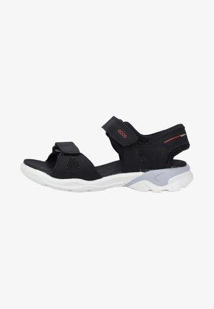 ECCO BIOM RAFT - Walking sandals - black
