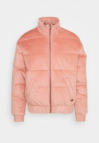 ADVENTURE COAST - Light jacket - ash rose