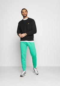 Urban Threads - COLOUR POP JOGGER UNISEX - Tracksuit bottoms - green - 1