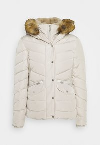 TOM TAILOR - SIGNATURE PUFFER JACKET - Winter jacket - dusty alabaster - 0