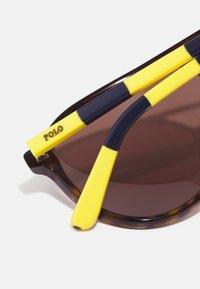 Polo Ralph Lauren - Sunglasses - shiny dark havana - 3