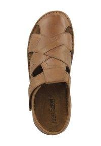 Josef Seibel - JOHN 08 - Walking sandals - chestnuts (16708-66-350) - 3