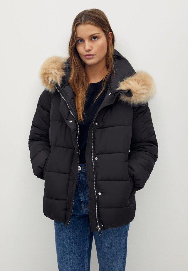 BOTANIC - Winter jacket - schwarz