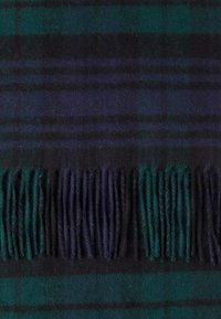 Johnstons of Elgin - CASHMERE SCARF - Šála - black watch - 3