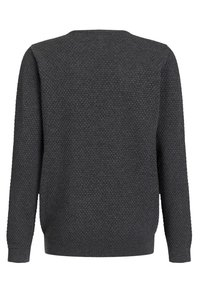 WE Fashion - JONGENS FIJNGEBREIDE MET - Jumper - blended dark grey - 1