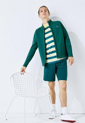 Zip-up hoodie - grün / navy blau / weiß