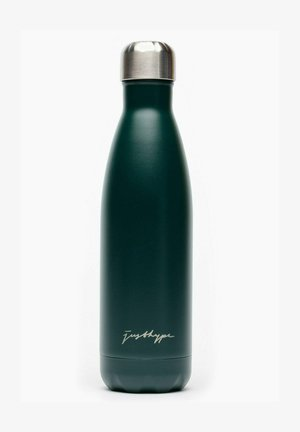 METAL REUSABLE WATER BOTTLE SIGNATURE - Other - green
