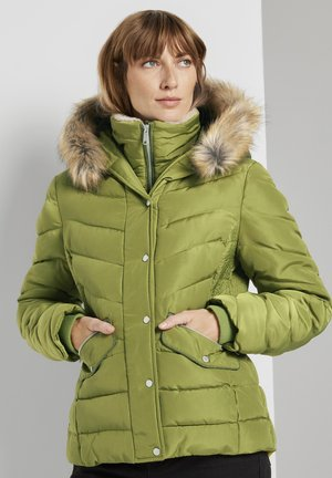 Winter jacket - wood green