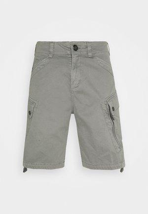 ROXIC - Pantaloni cargo - grey