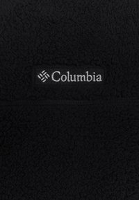 Columbia - RUGGED RIDGE™ II SHERPA HOODIE - Hoodie - black - 2