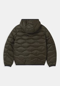 Blauer - GIUBBINI IMBOTTITO - Lehká bunda - dark green - 1