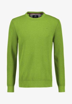 Jumper - reed green