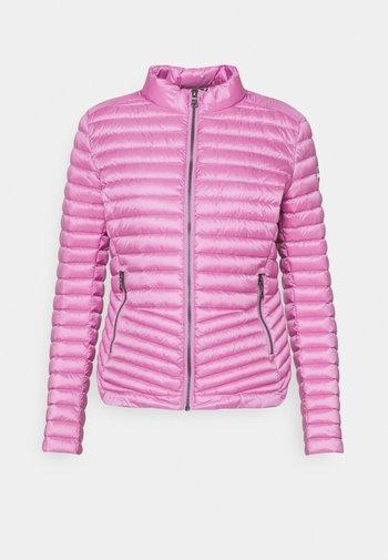 LADIES JACKET - Down jacket - etoile light steel