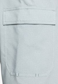 DC Shoes - Sports shorts - neutral gray - 4