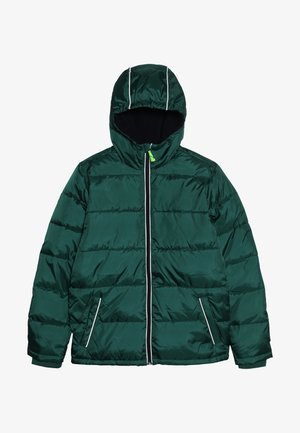 CLASSIC PUFFER - Winter jacket - deep alpine