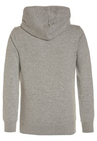 Petrol Industries - Hoodie - light grey melee - 1
