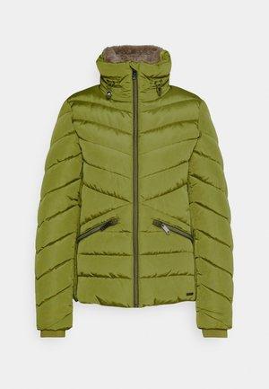 WINTERLY PUFFER JACKET - Winter jacket - wood green
