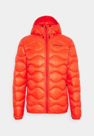 HELIUM HOOD JACKET - Down jacket - super nova