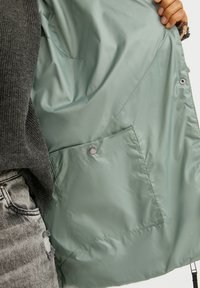 Finn Flare - Winter jacket - grey-green - 5