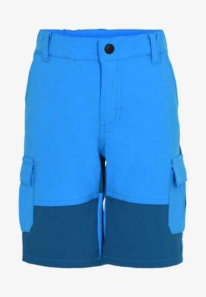 Cargo trousers - light blue
