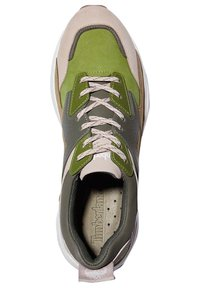 Timberland - Sneaker low - humus - 1
