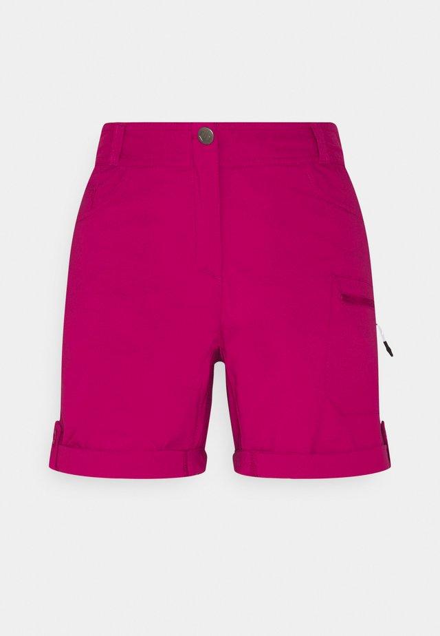 MELODIC II SHORT - Pantaloncini sportivi - berry pink
