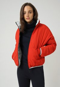 Napapijri - A-ALVAR - Winter jacket - grey harbor - 1