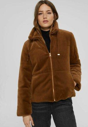 MIT STEHKRAGEN - Winter jacket - toffee