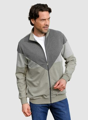 Zip-up sweatshirt - silbergrau,oliv