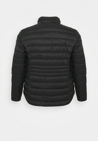 CAPSULE by Simply Be - LIGHTEWEIGHT PADDED SHORT COAT - Light jacket - black - 1