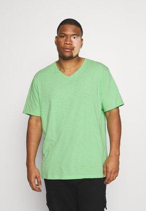 RAW VNECK SLUB TEE - Basic T-shirt - green