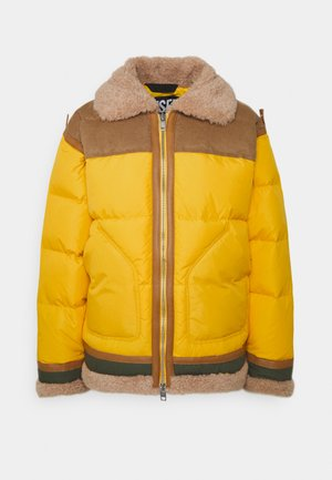 EVAN JACKET - Winter jacket - yellow
