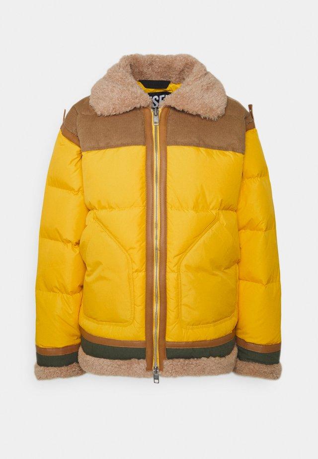 EVAN JACKET - Winter jacket - yellow