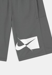 Nike Performance - Sports shorts - smoke grey/white - 2