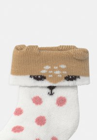 Ewers - NEWBORN FAWN GIRLS 6 PACK - Sokken - latte/grau