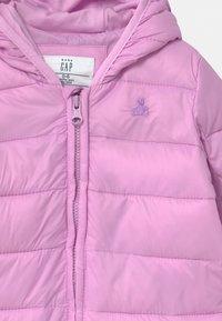 GAP - Snowsuit - violet tulle - 2