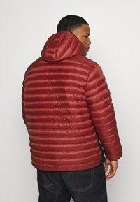 Jack´s Sportswear - PUFFER JACKET - Winter jacket - red - 2