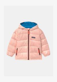 seafan pink