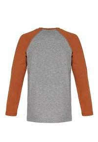 Band of Rascals - TIGER STYLE - Long sleeved top - rust - 1