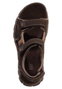 Cat Footwear - GILES - Walking sandals - dark brown - 6