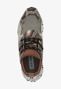 Steve Madden - STEVE MADDEN SNEAKER - Sneakers - brown snake 233 - 1