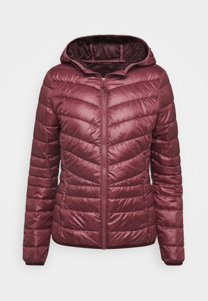 LIGHT PADDED JACKET - Lett jakke - renaissance rose