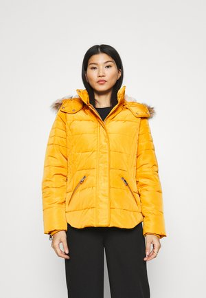 JACKET - Winter jacket - brass yellow