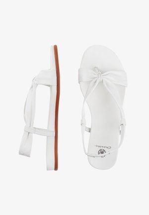 MIT BREITEN BÄNDERN - T-bar sandals - weiß