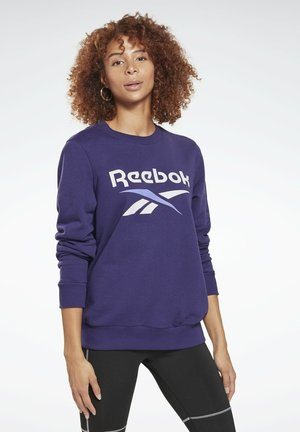 FRENCH TERRY BIG LOGO SWEATSHIRT - Felpa - purple